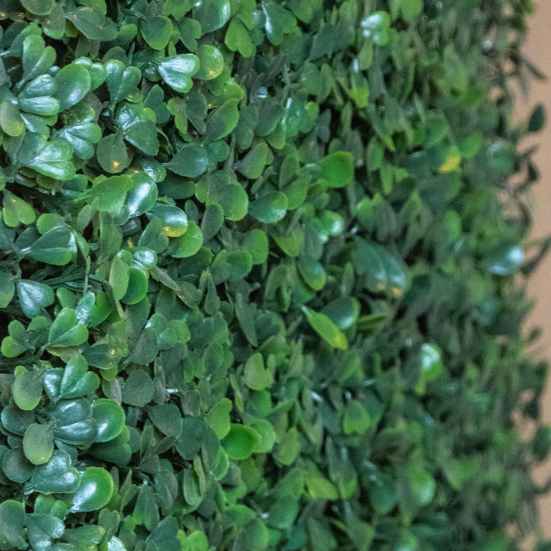Kunstpflanzenmatten und Teppiche von Alpenmoos - Farbe / Variante: Buchs